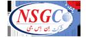 شرکت تخصصی مهندسی NSG.Co